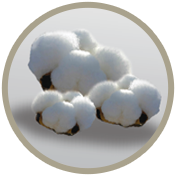 funda algodón