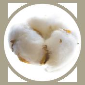percal 100% algodón